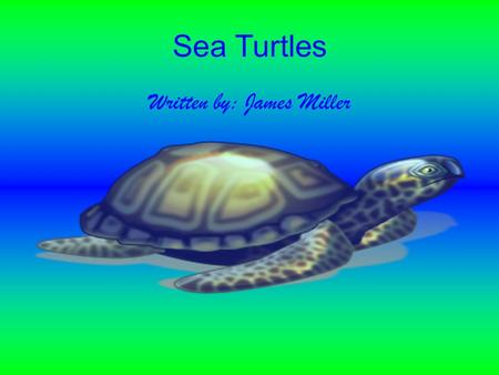Sea Turtles Written by: James Miller Sea turtles are almost extinct We need to protect sea turtles and their home, the oceans.