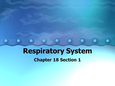 Respiratory System Chapter 18 Section 1. You Will Learn To describe the structures and functions of the respiratory system. To analyze the process of.