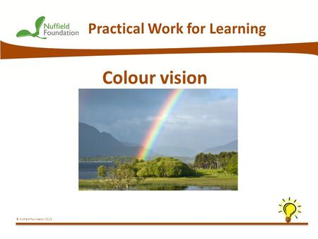 © Nuffield Foundation 2013 Practical Work for Learning Colour vision.
