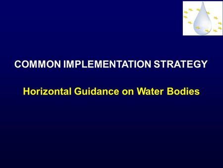 COMMON IMPLEMENTATION STRATEGY Horizontal Guidance on Water Bodies.