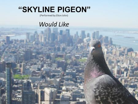 """SKYLINE PIGEON"" (Performed by Elton John) Would Like"