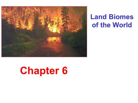 Land Biomes of the World Chapter 6. Earth's Major Biomes Tundra.
