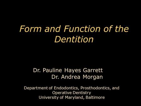 Form and Function of the Dentition Department of Endodontics, Prosthodontics, and Operative Dentistry University of Maryland, Baltimore Dr. Pauline Hayes.