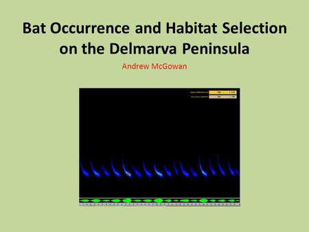 Bat Occurrence and Habitat Selection on the Delmarva Peninsula Andrew McGowan.