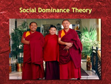"Social Dominance Theory ""…even superficial and seemingly meaningless distinctions between individuals can become the basis for collective identity and."