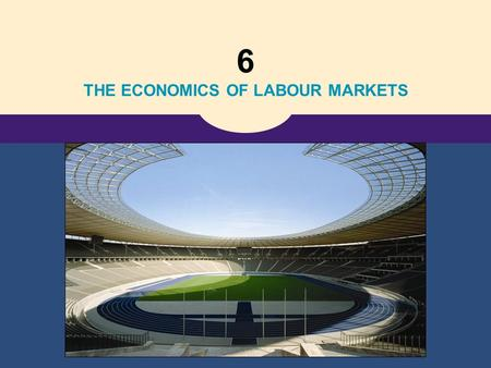 6 THE ECONOMICS OF LABOUR MARKETS. Copyright © 2006 Thomson Learning 18 The Markets for the Factors of Production.