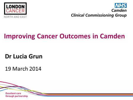 Improving Cancer Outcomes in Camden Dr Lucia Grun 19 March 2014.