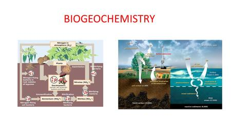 BIOGEOCHEMISTRY. What is Biogeochemistry? The study of the biological, geological and chemical factors that influence the movement of chemical elements.
