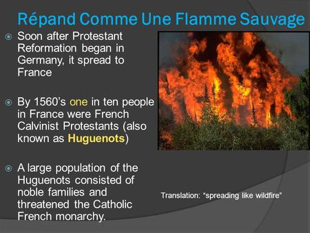 Répand Comme Une Flamme Sauvage  Soon after Protestant Reformation began in Germany, it spread to France  By 1560's one in ten people in France were.