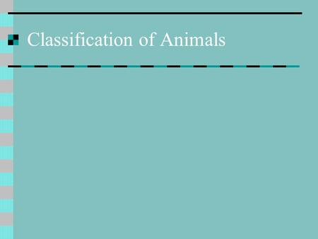 Classification of Animals. Why classify? All of us know the names of animals, such as the dog, cat, chicken, etc. These are called common names and they.