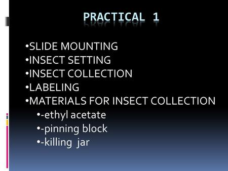 SLIDE MOUNTING INSECT SETTING INSECT COLLECTION LABELING MATERIALS FOR INSECT COLLECTION -ethyl acetate -pinning block -killing jar.