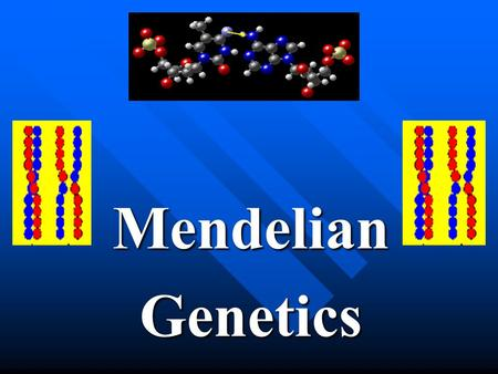 MendelianGenetics. (I) Foundations of Genetics (A) Heredity Traits (characteristics) are passed down from the parent to the offspring. Traits (characteristics)