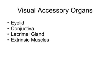Visual Accessory Organs Eyelid Conjuctiva Lacrimal Gland Extrinsic Muscles.