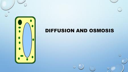 DIFFUSION AND OSMOSIS. DIFFUSION is the movement of liquid or a gas molecules from a high concentration to a low concentration until the substance is.