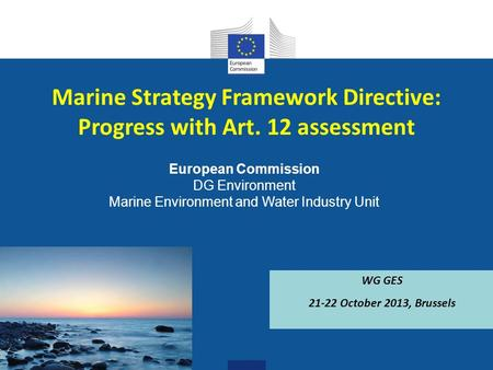 European Commission DG Environment Marine Environment and Water Industry Unit Marine Strategy Framework Directive: Progress with Art. 12 assessment WG.