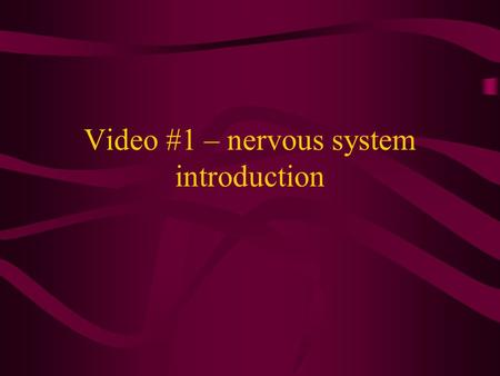 Video #1 – nervous system introduction. THE NERVOUS SYSTEM.