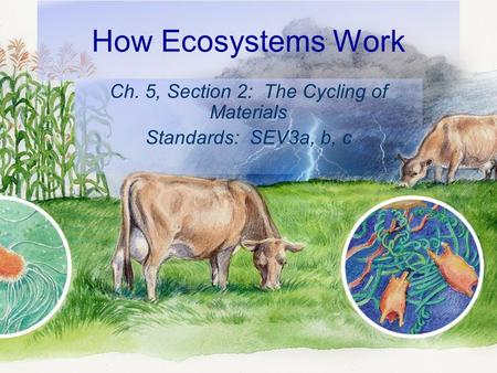 How Ecosystems Work Ch. 5, Section 2: The Cycling of Materials Standards: SEV3a, b, c.