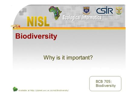 Available at  Biodiversity Why is it important? BCB 705: Biodiversity.