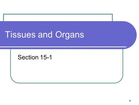 Tissues and Organs Section 15-1 1. 5 Levels of Organization A single cell Tissues Organs Organ Systems Organism 2.