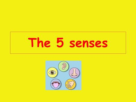 The 5 senses The 5 Senses are: Taste Smell Hear See Touch.