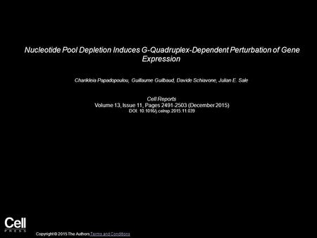 Nucleotide Pool Depletion Induces G-Quadruplex-Dependent Perturbation of Gene Expression Charikleia Papadopoulou, Guillaume Guilbaud, Davide Schiavone,