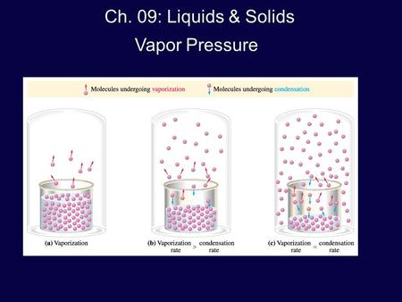 Ch. 09: Liquids & Solids Vapor Pressure. Vapor = the gaseous state of a substance that has escaped from the liquid phase e.g., ½-filled cup of coffee: