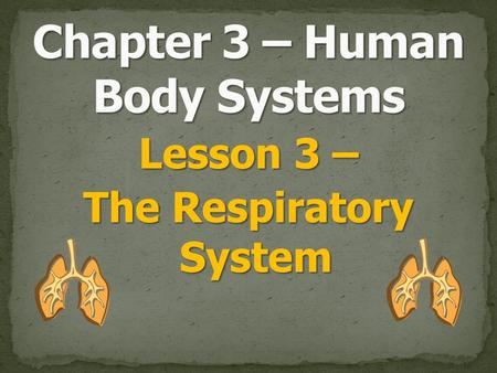 Lesson 3 – The Respiratory System. Breathing is the job of this system. Breathing is the job of this system. This system takes oxygen from the air and.
