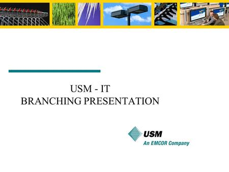 USM - IT BRANCHING PRESENTATION. Branch copying a codeline to create a new one codelines evolve independently 141157162164170179195206 167177183 202 //depot/main/...