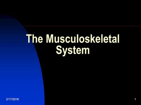 2/17/20161 The Musculoskeletal System 2/17/20162 The Musculoskeletal System The organs of the musculoskeletal system are the bones and skeletal muscle.