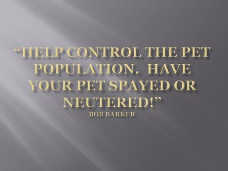  Everyone will have a better understanding of the importance of having their pets altered.