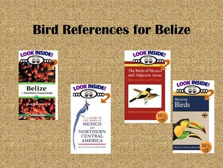 Bird References for Belize Birds in Belize An introduction.