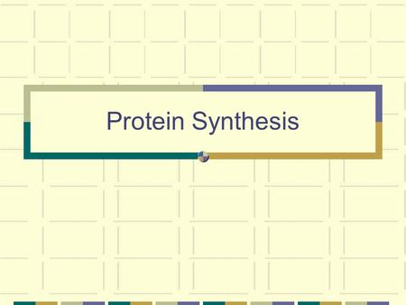 Protein Synthesis. Genes  Proteins Genes: a sequence of nucleotides in DNA that performs a specific function. Each gene contains the instructions to.