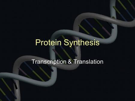 Protein Synthesis Transcription & Translation. RNA is composed of 3 parts: Ribose: smaller sugar than deoxyribose of DNA Phosphate 4 Bases –Adenine (A)