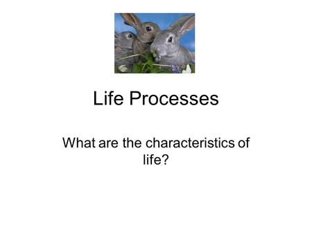 Life Processes What are the characteristics of life?