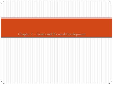 Chapter 2 – Genes and Prenatal Development. From Zygote to Newborn Three main periods of prenatal development 1. Germinal Period (first two weeks after.