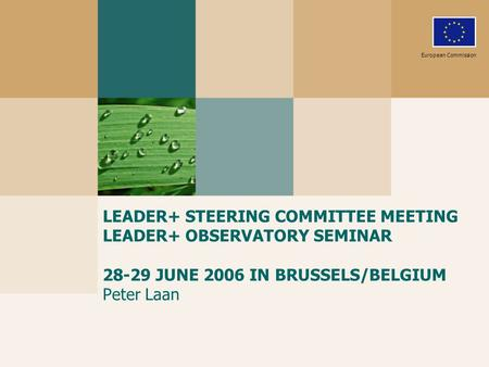 LEADER+ STEERING COMMITTEE MEETING LEADER+ OBSERVATORY SEMINAR 28-29 JUNE 2006 IN BRUSSELS/BELGIUM Peter Laan European Commission.