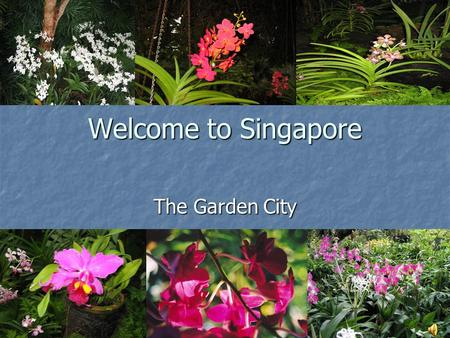 Welcome to Singapore The Garden City. Map of Singapore