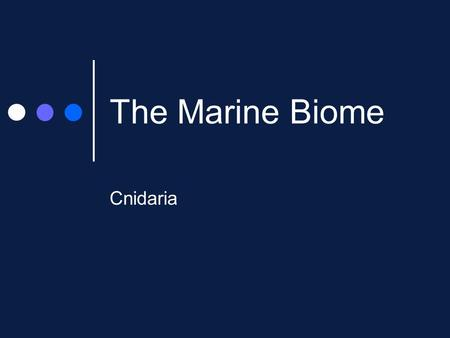 The Marine Biome Cnidaria.