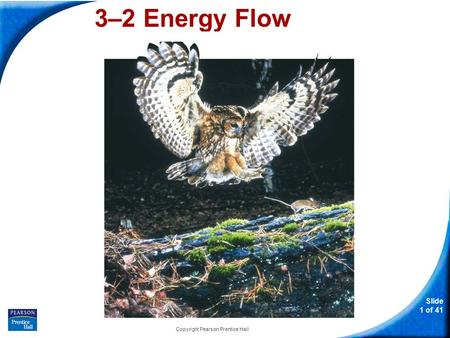 Slide 1 of 41 Copyright Pearson Prentice Hall 3–2 Energy Flow.
