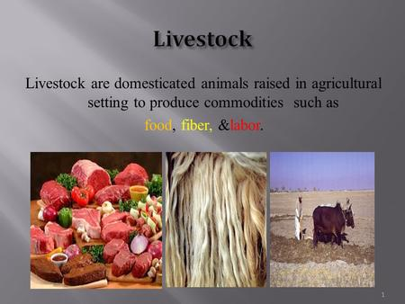 Livestock are domesticated animals raised in agricultural setting to produce commodities such as food, fiber, &labor. 1.