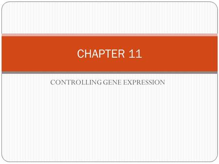 CONTROLLING GENE EXPRESSION CHAPTER 11. GENE EXPRESSION - occurs in the DNA- prior to TRANSCRIPTION the activation of a gene that results in the formation.