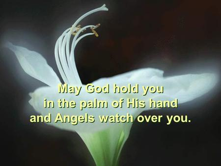 May God hold you in the palm of His hand and Angels watch over you. May God hold you in the palm of His hand and Angels watch over you.