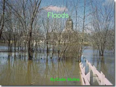 Floods By:Codie Mullins. Facts About Floods Six inches of fast flowing water will knock you off your feet. Four inches of water will ruin your carpet.