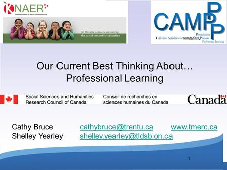 1 Our Current Best Thinking About… Professional Learning Cathy Bruce Shelley