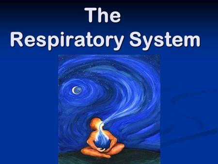 The Respiratory System. To Review… Cellular Respiration is… A set of chemical reactions that release energy from food molecules A set of chemical reactions.