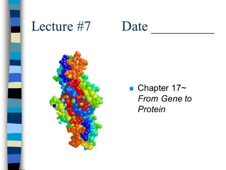 Lecture #7Date _________ n Chapter 17~ From Gene to Protein.