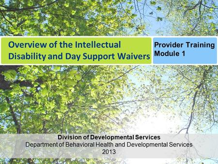 Overview of the Intellectual Disability and Day Support Waivers Provider Training Module 1 Division of Developmental Services Department of Behavioral.