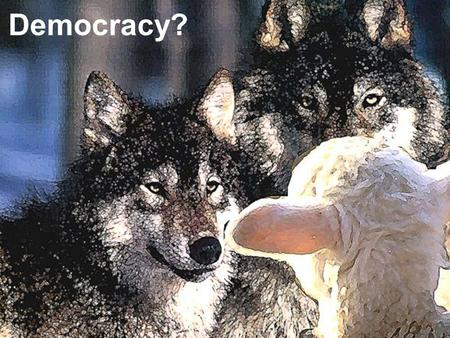 IS DEMOCRACY EVIL? Democracy?. TRADITIONAL DEMOCRATIC THEORY Democracy should fulfill the following: Equality in Voting- My vote equals Obamas vote Effective.