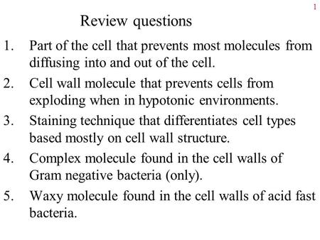 Review questions 1.Part of the cell that prevents most molecules from diffusing into and out of the cell. 2.Cell wall molecule that prevents cells from.