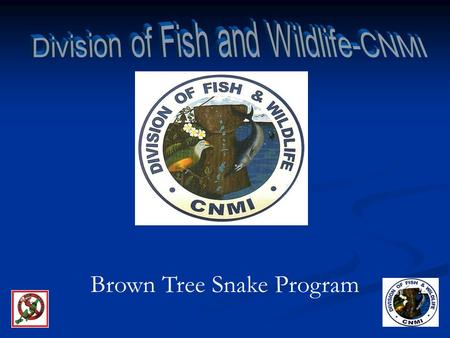 Division of Fish and Wildlife-CNMI